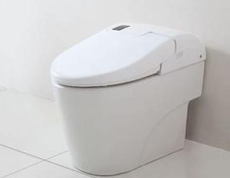 双喷嘴设计英皇卫浴智能马桶,提供臀部清洁与女性清洁,清洗到位.