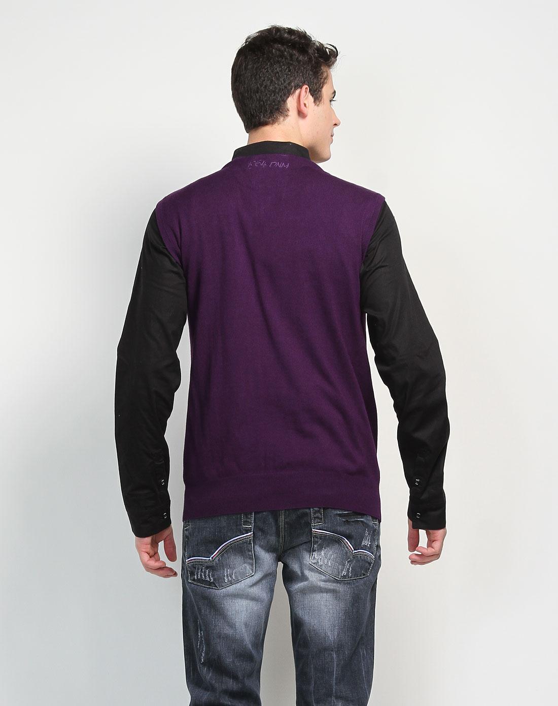 男款紫色刺绣logo舒适v领针织背心