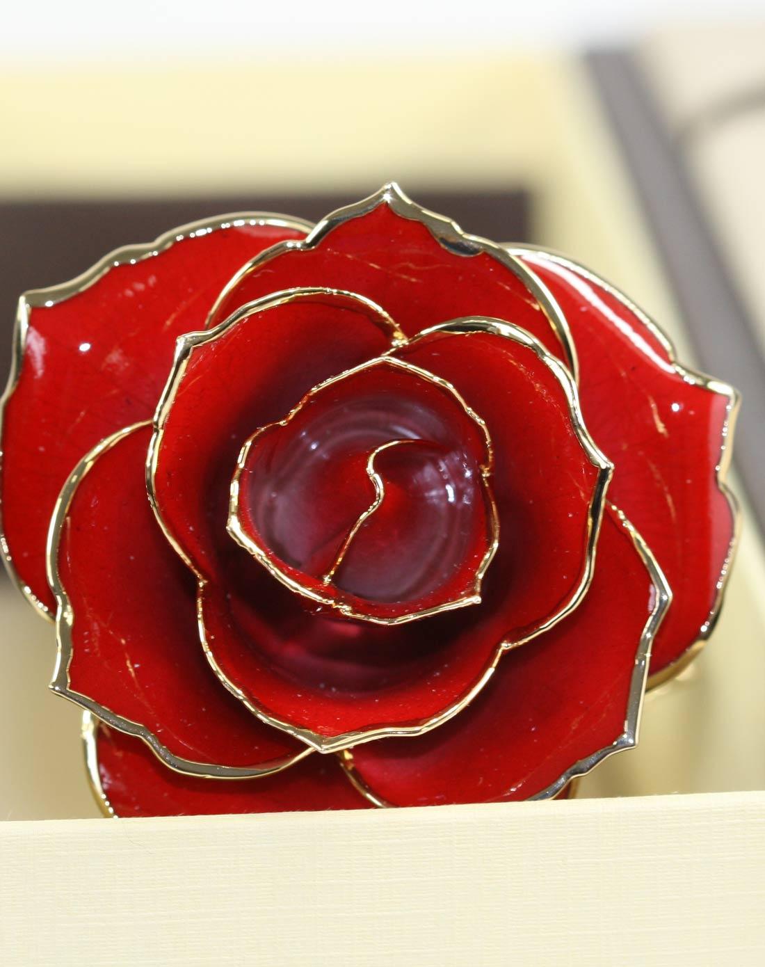 情人节大红24k金镀绿叶天然真花玫瑰花
